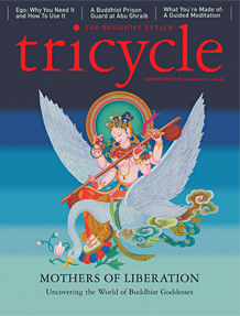 Tricyle Cover Image